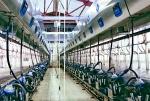 Доильный зал Dairymaster Параллель 2х24
